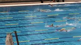 Éremhalmozó úszók