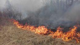 Egyre több a szabadtéri tűz Somogyban