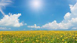 Sok napsütésre, egyre melegebb időre számíthatunk a héten
