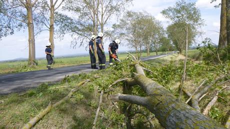 Fákat döntött a vihar Somogyban