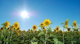 Kedden már végre a napsütésé lesz a főszerep