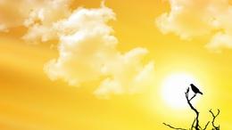 A július időjárása sem a rekord melegekről szól majd