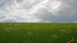 Labilis levegő alakítja időjárásunkat