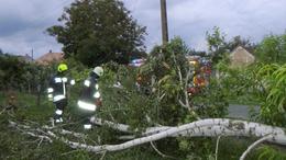 Kerítésre szakadt egy hatalmas faág