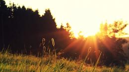 A friss éjszakákat egyre melegebb nappalok követik
