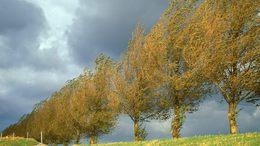 Erős lehűlést, igazi őszi időt hoz a hétvége
