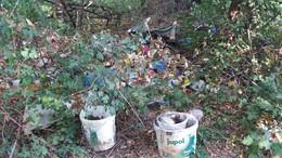 Több száz köbméter hulladék keletkezik évente a somogyi erdőkben