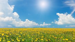 Pénteken még marad a kellemes tavaszi idő