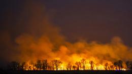 Hatalmas lángokkal égett a fonyódi berek