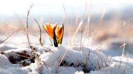 Visszaköszön a tél márciusban?