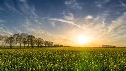 Borúra derű: szombatra javul az idő