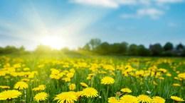 Megszűnik a hűvös levegő utánpótlása, jön az igazi tavasz