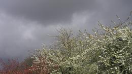 Hidegfront zavarja meg a szép időt