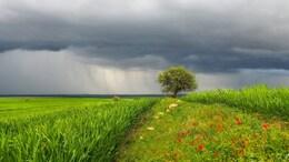 Változékony, záporokkal, zivatarokkal tarkított idő várható