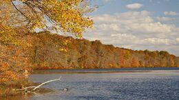 Csendes, kora őszi idő várható a hétvégén
