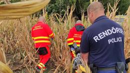 Egy kukoricásban találták meg az eltűnt idős férfit