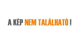 Mérföldkövéhez érkezett a Németh István Program